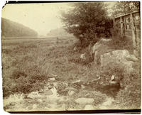 Isham meadow spring, 25 feet southwest of the Isham stable spring, Inwood, New York City, June 29, 1898.