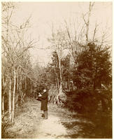 Unidentified man on a wooded path, undated [c. 1893-1902?].