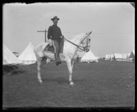 Lieutenant Henry Sherman Sternberger of the 22nd Regiment on horseback, Camp Black, May 14, 1898.