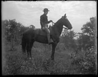 Unidentified man on a horse during a sham battle, Bronx, N.Y. [?], undated.
