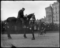 Captain [i.e. Brevet Major David] Wilson of the 2nd Battery N.G.N.Y. receiving the key to the borough on the way to the new armory, Bronx, N.Y., October 25, 1902. Spot the dog [Second Battery mascot?] at right.