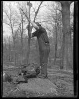 Unidentified man breaking stone with an ax during the construction of the New York Zoological Gardens [the Bronx Zoo], Bronx, N.Y., undated [c. 1899].