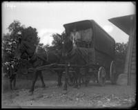 Horse-drawn truck from P. Brady & Son, 552 W. 58 Street, New York Zoological Gardens [the Bronx Zoo], Bronx, N.Y., 1899.