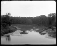 Bronx River, New York Zoological Gardens [the Bronx Zoo], Bronx, N.Y., 1899.