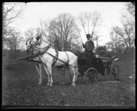 Coach and driver, New York Zoological Gardens [the Bronx Zoo], Bronx, N.Y., 1899.