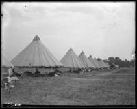 A tent street, State Camp (Camp Smith), Peekskill, N.Y., June 16, 1904.