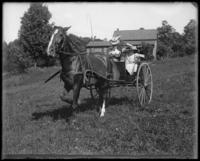 Daisy with Willie and Grace in a cart, Garrison, N.Y., 1901.