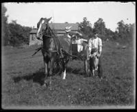 Daisy with Willie and Grace in a cart, Garrison, N.Y., 1901. Frank standing alongside with a dog.