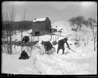 Grace and Willie digging a path in the snow, Garrison, N.Y., March 18, 1906.