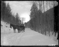 Unidentified family in a horse-drawn sled, Garrison, N.Y., March 18, 1906.