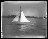 [Model?] sailboat, Orchard Beach, Bronx, N.Y., 1907.