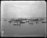 Boat race, Orchard Beach, Bronx, N.Y., 1907.