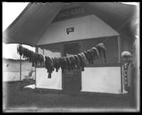 Line of fish hung in front of 'Camp Grade Adele,' Orchard Beach, Bronx, N.Y., 1911.