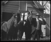 Unidentified man with three horses in front of a stable, Bronx, N.Y. [?], July 24, 1903.
