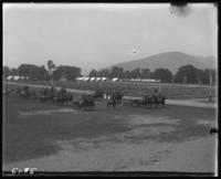 3rd Battalion on parade, State Camp (Camp Smith), Peekskill, N.Y., June 16, 1904.