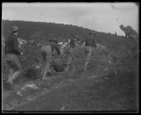 Second Battery men running wire up a hill, State Camp (Camp Smith), Peekskill, N.Y., September 5-7, 1903.