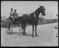 Two unidentified men in a horse buggy, Bronx, N.Y. [?], undated [c. 1910?].