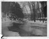 River in the snow, Bronx Park, Bronx, N.Y., 1903.