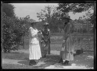Three unidentified young women standing in the shade of a tree, talking, New York City, June 24, 1917.