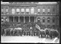 Crowd gathered on the steps of City Hall, with United War Work elephants, New York City, undated [ca. November 1918].