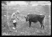 William Gray Hassler with a cow, New York City, undated (ca. 1913-1914).