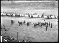 High angle shot of unidentified horses in racing harness on the Speedway, New York City, May 1910. Taken from the judges' stand.