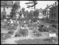 Children working in the garden at the Poppenhusen branch of the Queens Borough Public Library, August 14, 1915.