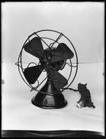 Product shot of an electric fan, undated [ca. April 1916].