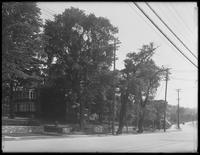 Bailey Avenue looking south from Albany Crescent, Bronx, June 2, 1916.