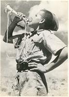 A Boy Playing the Trumpet in a Camp in Tehran