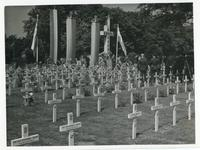 Cemetery of Polish pilots [3]