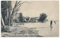 A Glimpse of the Shore near Cayuga Canal Lock, Cayuga, N.Y. (1front) [y0001ac1]