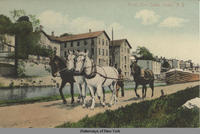 Along Erie Canal, Lyons, New York [front caption] (1 front) [e0120ac1]