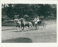 Children and man on a horse and carriage ride